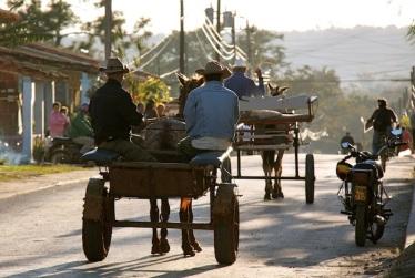 i più frequenti mezzi di trasporto in città