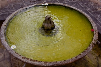 una delle tante splendide fontane