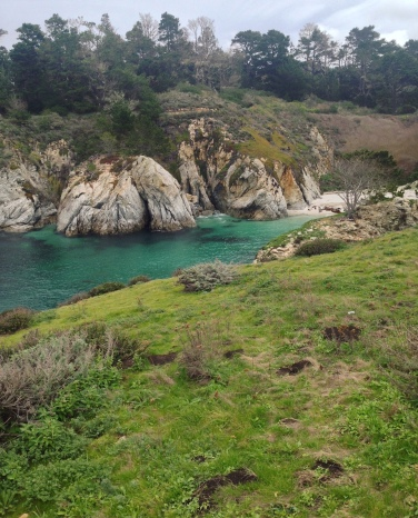 altro scorcio dal Bird Trail di Point Lobos
