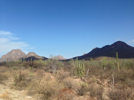 il deserto, onnipresente