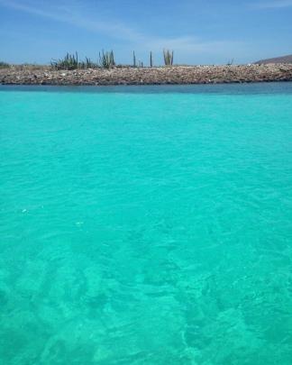 in barca alla Isla Carmen, Loreto